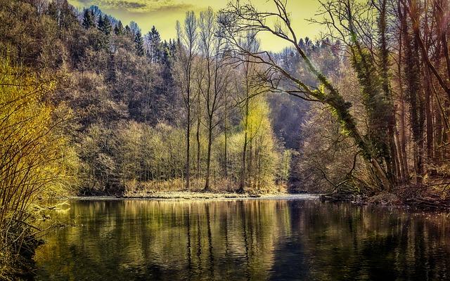 un étang privé à entretenir